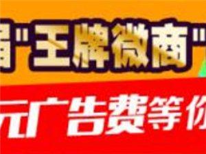 """�~山首届""""王牌脐橙.微商网销""""评选大赛,万元广告宣传等你拿!"""
