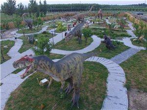 河北省沧州河间市兴丰侏罗纪公园太好玩了