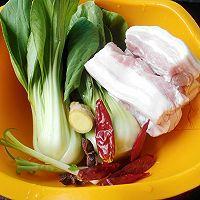 美食聚会:传统红烧肉,家庭版做法