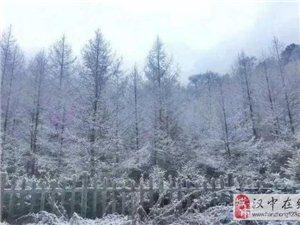 汉中下雪了,好美!