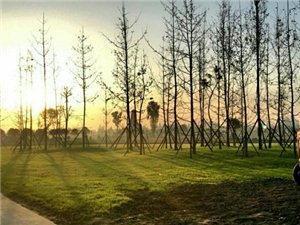 广汉首家标准足球公园开业啦,将在12月举行开业6人制杯赛,现火热报名中
