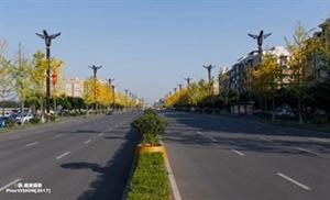 中山大道在初冬时节特美丽