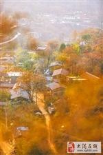 在色彩斑斓的麻麻花,摘柿子,吃火盆锅,过两天一晚山隐生活