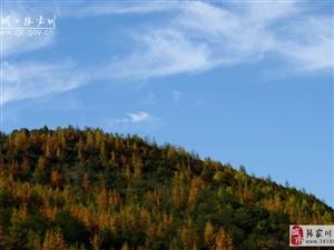 【大美张家川】秋去冬来,唯有秦家塬美景让人不舍