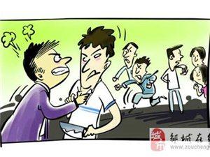 邹城:一棵花椒树引纠纷