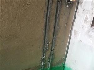 黄墙绿地你听说过吗?