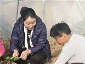 【人物访谈】七彩人生 | 陕西劳模刘仙会