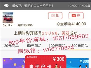 河南的新项目 公司转型都可以看看 sys半价抢购平台系统定制开发