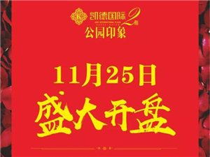 【凯德国际・公园印象】11月25日盛大开盘!