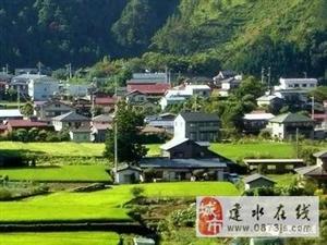 岔科镇建设美丽家园人居环境大提升