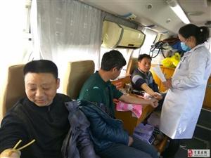 县供电公司党员干部勇跃参加义务献血活动