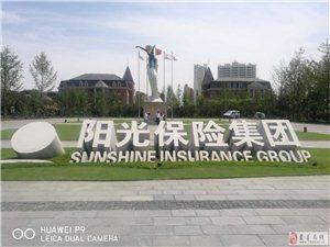 阳光保险招聘