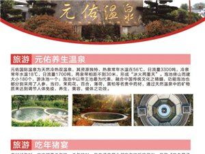 """年猪宴+泡温泉+赏1800年对节古树――你想要的""""年味""""这儿都有!"""