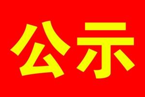 汤阴永新化学有限责任公司项目公示