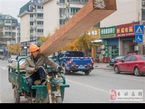 长兴大街横冲直撞的电三轮