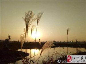 在汉中滨江湿地公园的诗画中,走走停停!