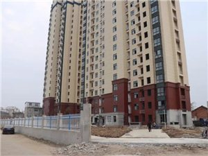 太阳城11月份工程进度报道,内附施工进度,面积,价格