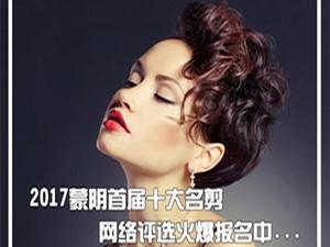 2017蒙阴首届十大名剪网络评选大赛活动