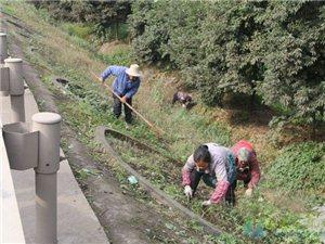 夹江:清理路边沟 助力创国卫