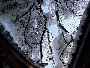 美美的雪景~~~咱宁强也会有的~~~