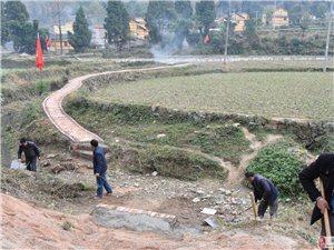 城关镇农村清洁风暴行动进入常态化
