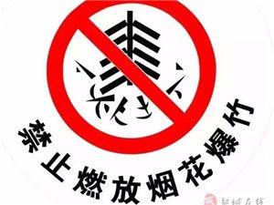 《济宁市烟花爆竹燃放管理条例》明年起实施