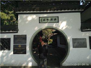 京沪苏杭8日游