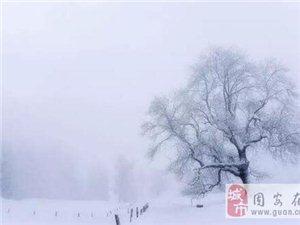 大雪��~10首:晚�硖煊�雪,能�一杯�o?