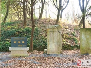 长兴这个村有一个晋代名相谢安墓