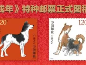 所有人!戊戌年生肖集邮藏品火热预售――中国邮政