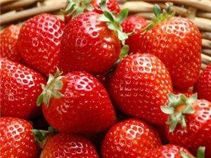 又到吃草莓的季�啦!你�_定不戳�M�砜纯矗�