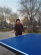 湿地公园晨练球趣●杨东升(图)