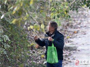 """汉中湿地公园现数位""""都市猎人"""""""