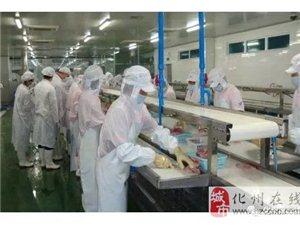 化州某工厂188名越南籍非法入境务工人员被带走