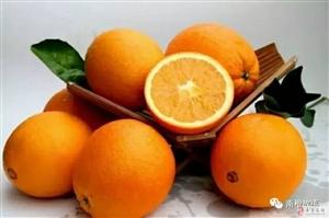澄江汶口有四万斤脐橙出售,果均匀,漂亮,少量沙皮