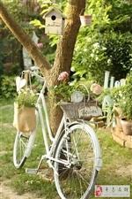 设计师用满大街的废旧自行车改变新生活