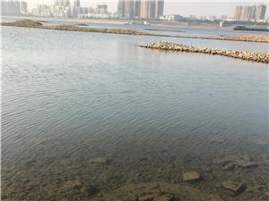 在水一方,美丽澳门太阳城娱乐!