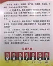 雄安首例!安新县这个公益团体有了党组织(图)