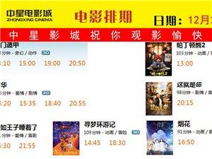 12月21日影讯 《芳华》《奇门遁甲》正在热映