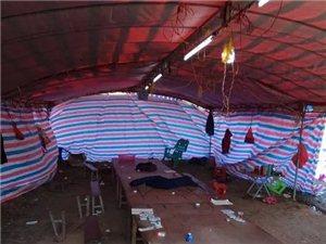 11名化州人在两广交界野外山岭,涉嫌聚众赌博被公安抓获