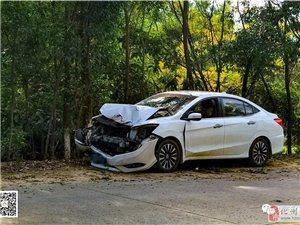 """化州合江发生一起交通事故,一辆深圳牌照的小车转弯""""漂移""""撞上大树……"""