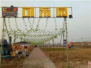 临泉城北竟然开了一家游乐园,别说你没去过!