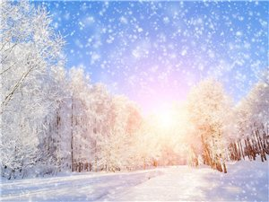 在清绝寒冬,做温暖的红尘过客