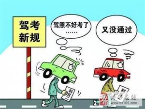 新规后驾照到底难不难考?看看他们是怎么说的・・・・