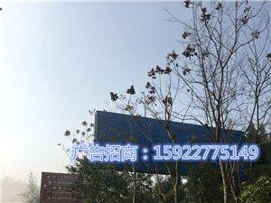 武仙路上T型�敉�V告牌低�r出租