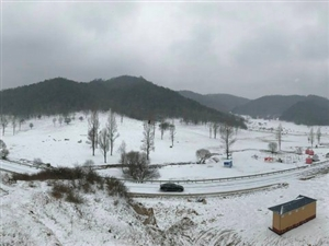 大雪纷飞,浩荡大关山尤如一幅水墨画