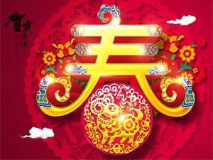 武功春节文化活动