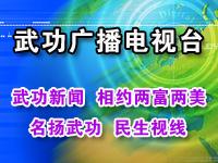 武功广播电视台