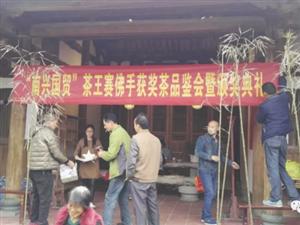 永春上演了一场有趣的民间斗茶会,你知道吗?