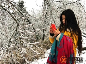 没错!酉阳2018年的第一场雪就这么猛烈地来了!